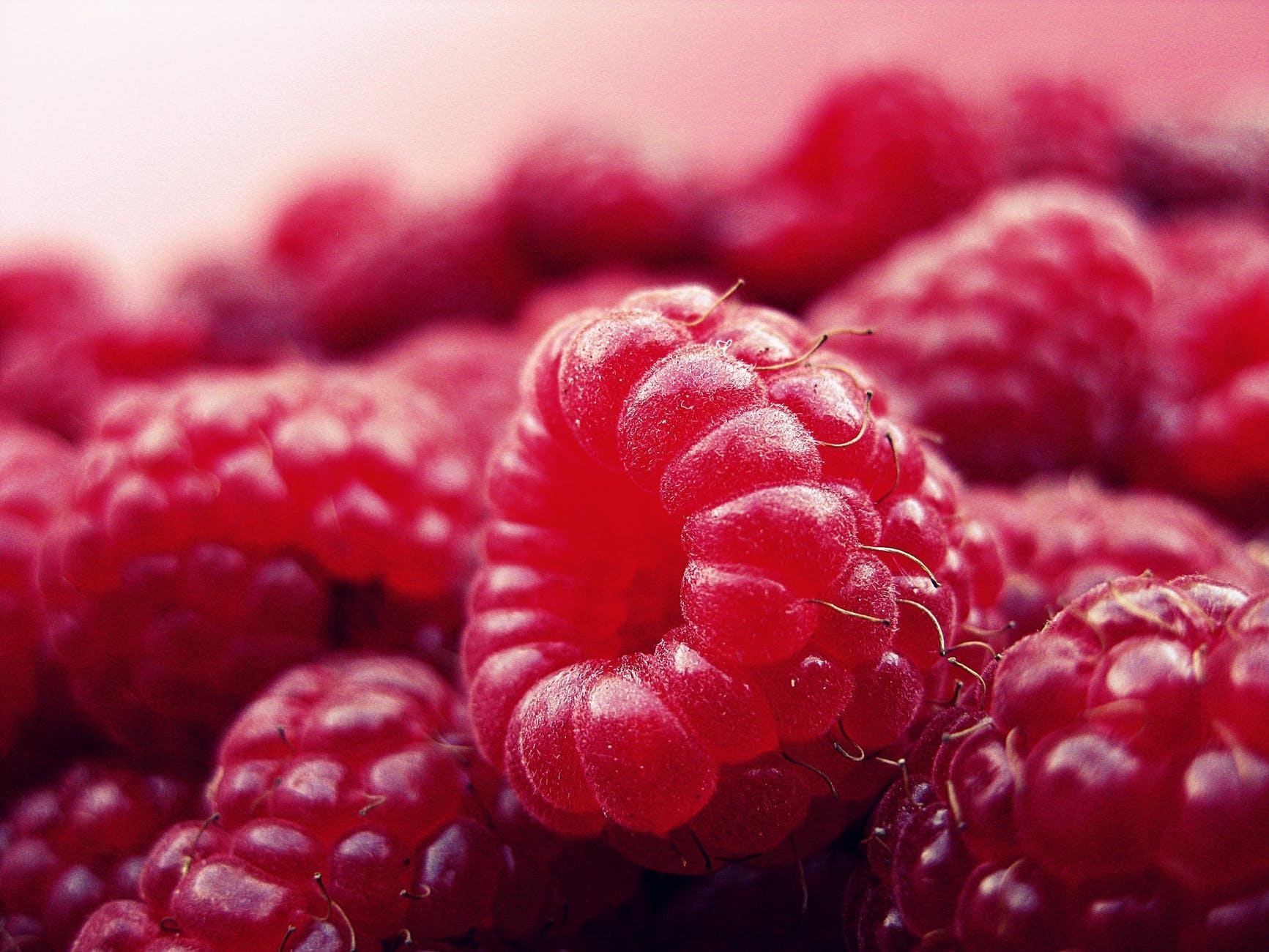 raspberry-fruits-fresh-red-52536